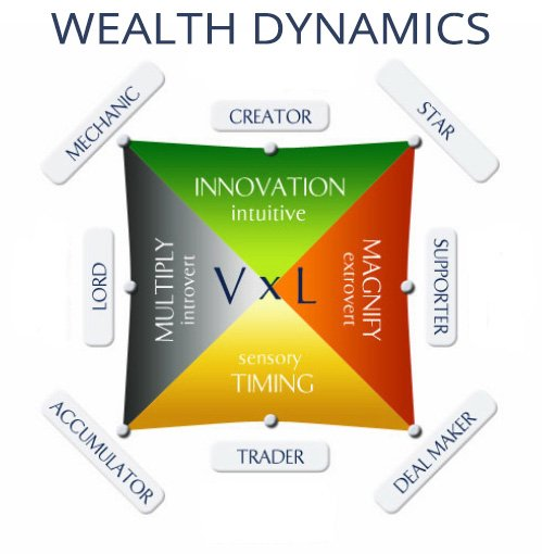 Wealth Dynamics Profiles